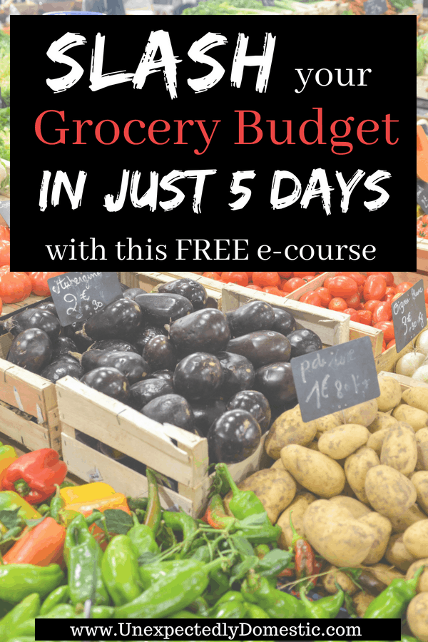 How to Slash Your Grocery Budget in 5 days!