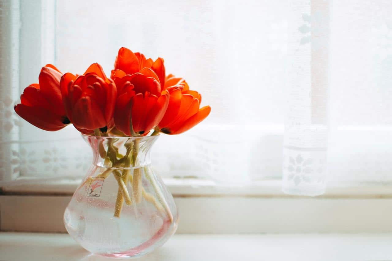 How to make your home smell like summer! Use these easy ways to make your house smell fresh, clean, and amazing all the time!
